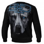 Bluza PIT BULL WEST COAST Blue Eyed Devil 18 black