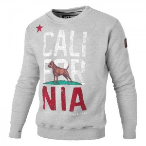Bluza PIT BULL WEST COAST California Flag grey