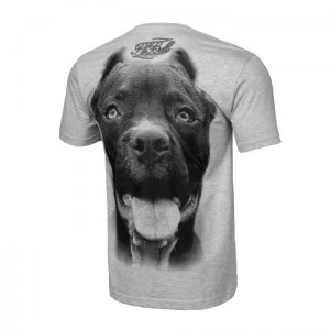 T-shirt PIT BULL WEST COAST Pitbull IR szary
