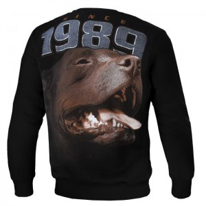 Bluza PIT BULL WEST COAST Fighter
