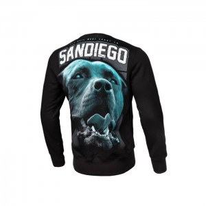 Bluza PIT BULL WEST COAST Sandiego