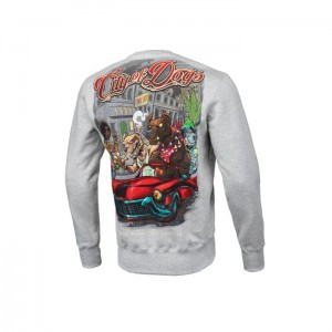 Bluza PIT BULL WEST COAST City Of Dogs 19 Szara